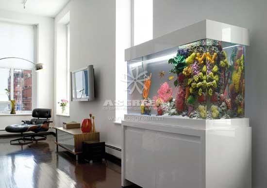 Những điều lưu ý khi đặt bể cá trong nhà