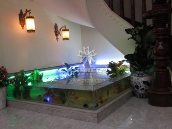 Có nên đặt bể cá cảnh ở gầm cầu thang?