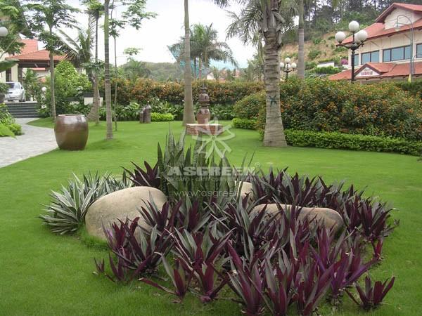 Bài trí sân vườn cũng phải chú ý đến hướng nhà khoa học phong thủy.