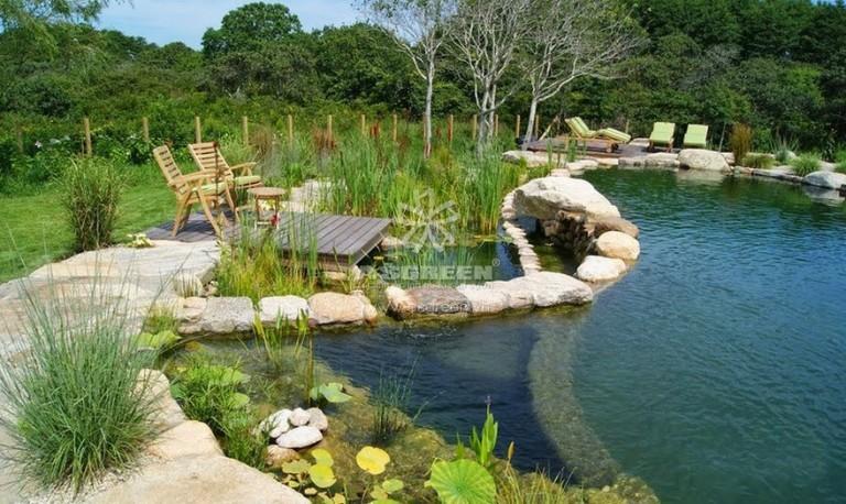 Thiết kế và thi công bể bơi sinh thái