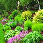RMS-coastalgardener_garden-on-a-slope_s4x3.jpg.rend.hgtvcom.616.462