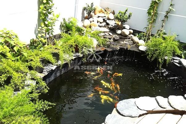 Hồ cá Koi là công trình tuyệt vời trong sân vườn