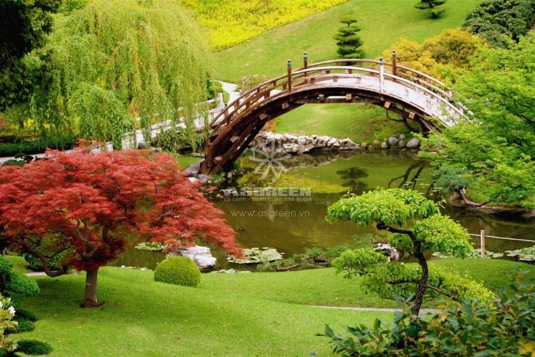 Thiết kế thi công cảnh quan sân vườn