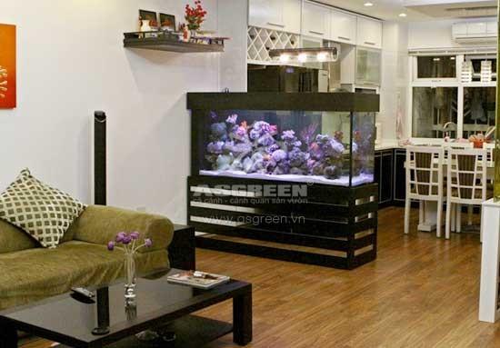 Cách làm bể cá cảnh đẹp với thiết kế hợp lý nhất