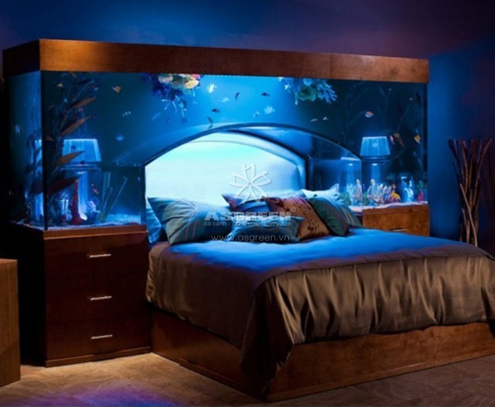 Bố trí bể cá ở phòng ngủ