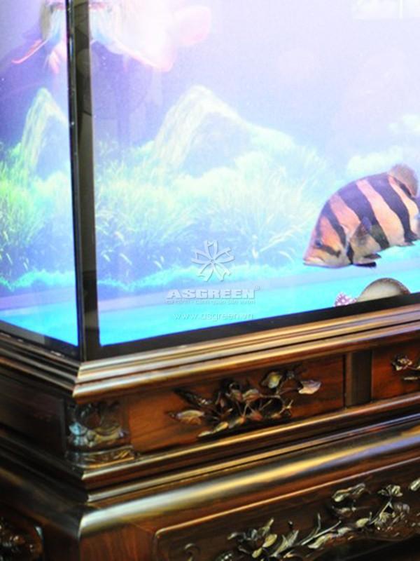 Bể cá rồng gỗ gụ cao cấp với hệ thống lọc tốt nhất hiện nay