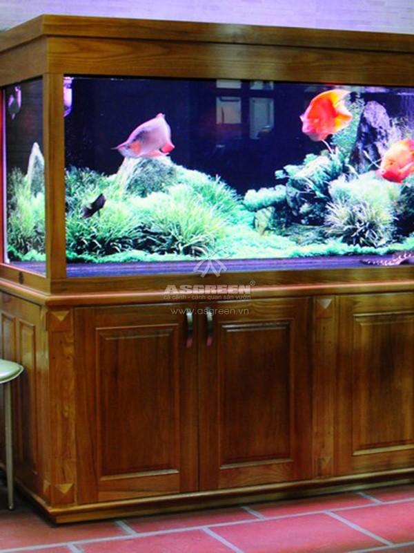 Bể cá gỗ rồng có hệ thống lọc cao cấp