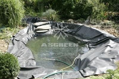 Tạo dáng hồ cá koi sân vườn theo ý muốn