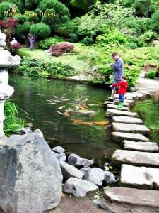 Mẫu hồ cá Koi truyền thống Nhật Bản 04