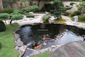 Mẫu hồ cá Koi truyền thống Nhật Bản 10