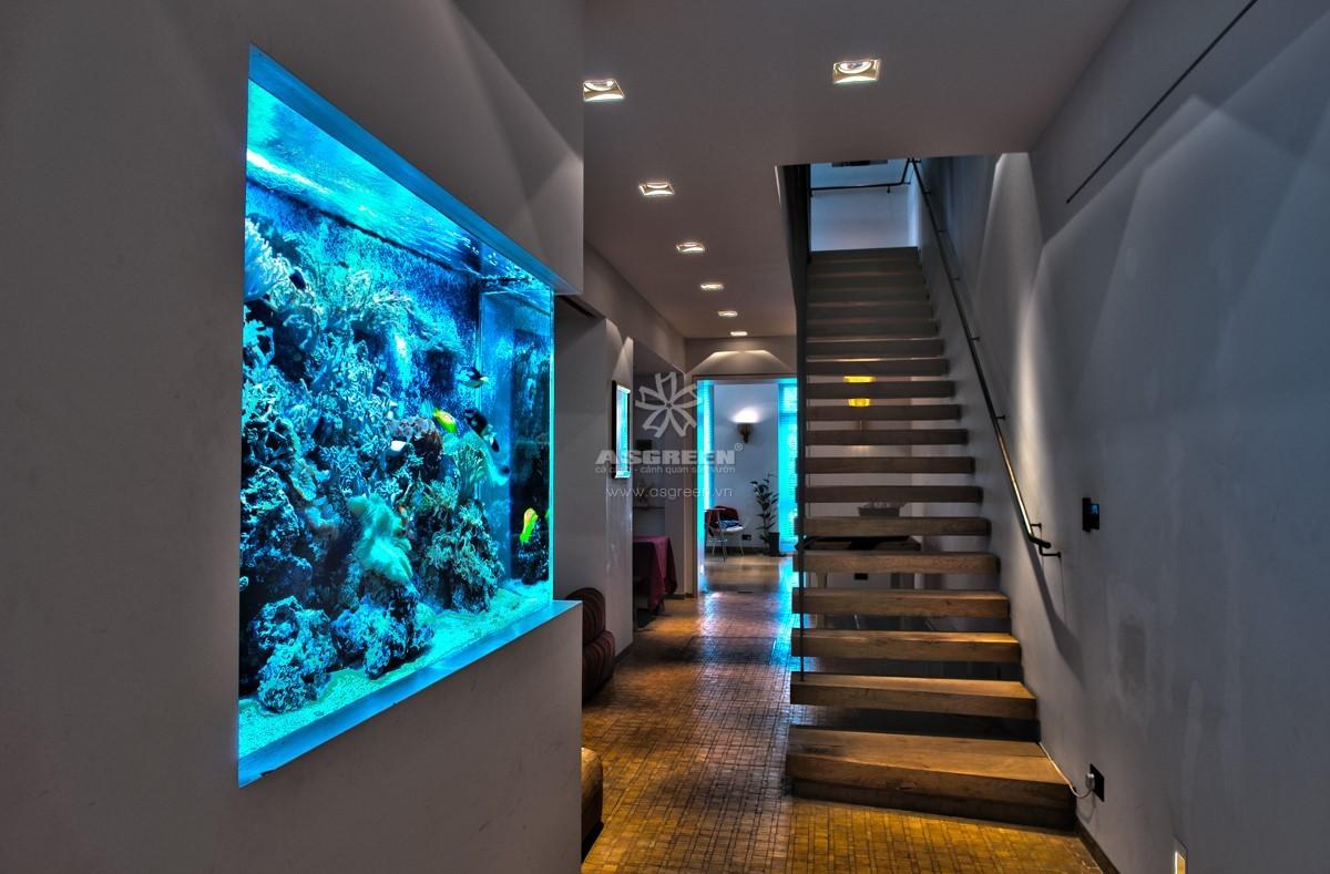 Thiết kế và thi công bể cá treo tường