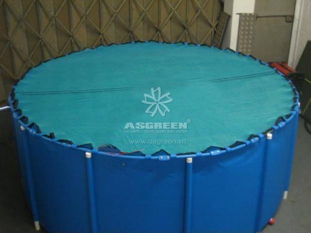 Lưới đậy chu đáo là một yêu cầu cần thiết cho tank dưỡng cá