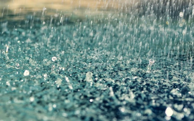 Quản lý hồ Koi khi gặp mưa đầu mùa