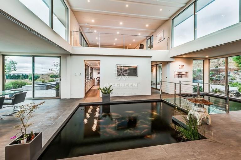 Mẫu hồ cá Koi thiết kế trong nhà